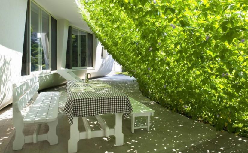 Egy otthon zöld függöny hűtéssel